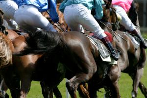 AM-horseracing-e